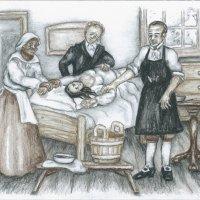 Hlavní obrázek - První zdařilá ovarektomie se odehrála na Štědrý den