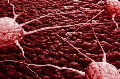 Hlavní obrázek - Screening CTC efektivní v detekci prekancerózních lézí a KRK